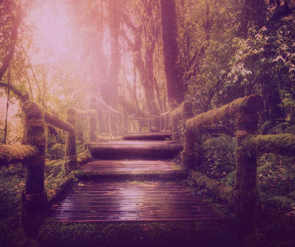 Die Rauhnächte – unsere Geister der heutigen Zeit