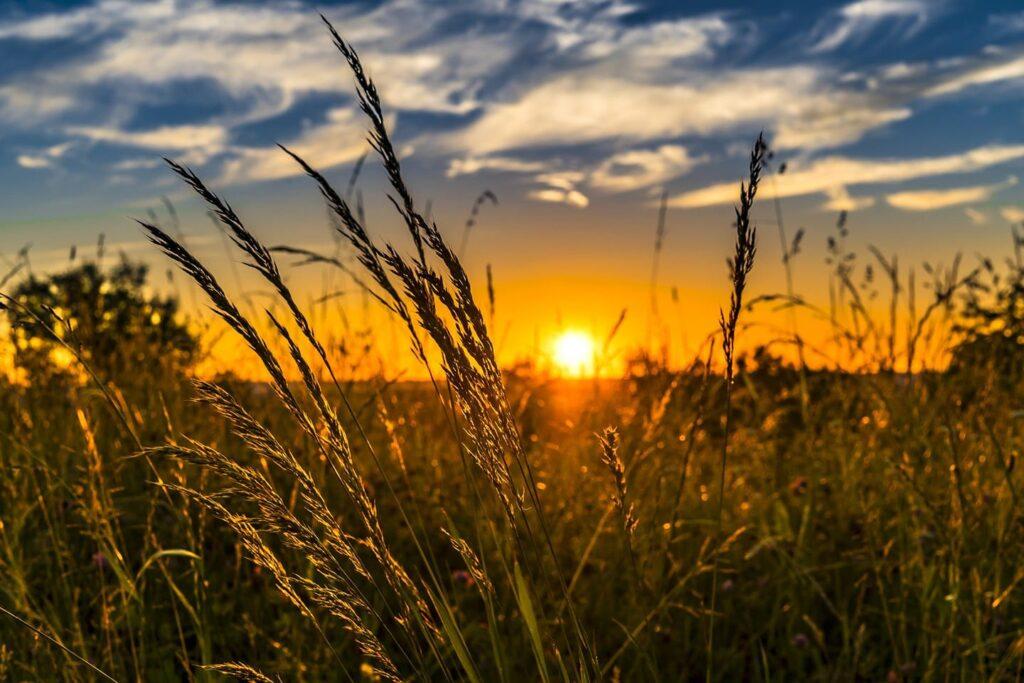 Sommersonnenwende Weltenwandlerin