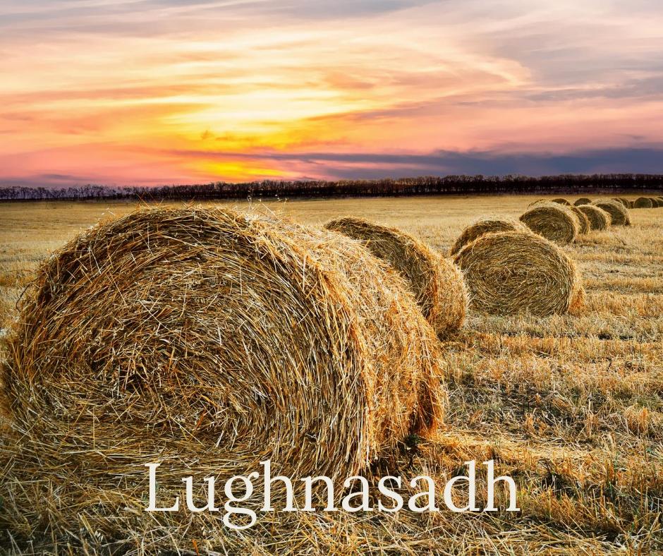 Read more about the article Lughnasadh – das Fest der Schnitterin